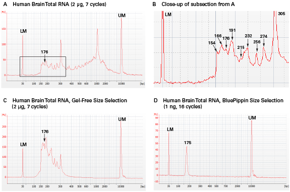 small rna seq library profiles before and after size selection