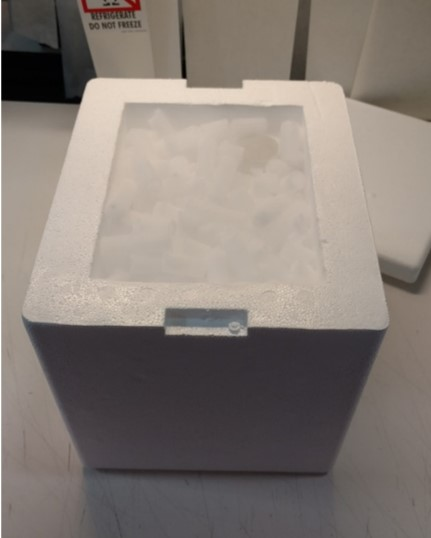 Dry ice packaging (with ice)
