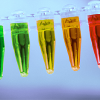 Fluorescent protein products