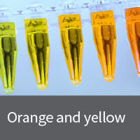 mBanana yellow fluorescent protein vectors