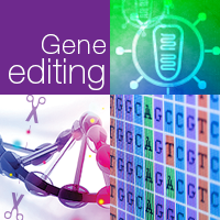Recent advancements in the field of gene editing.