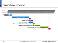 Workflow and timeline for a genome-wide library screen