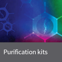 Adenovirus purification kits