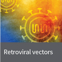 Retroviral vectors and systems