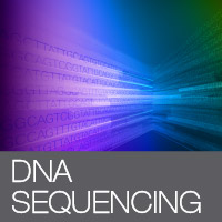 SMARTer NGS DNA sequencing