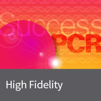 High fidelity PCR