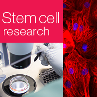Research-grade stem cell services