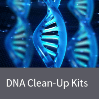 Clean up and concentrate large genomic DNA fragments from enzymatic reactions or prepurified samples