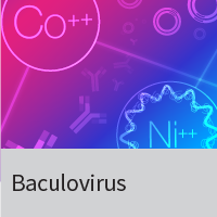 Baculovirus expression systems, titration kits, insect cells and media.