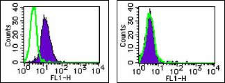 Flow cytometry analysis of U937 cells (A) and Raji cells (B), using Anti-Human Galectin-3 (87B5) Mouse IgG MoAb
