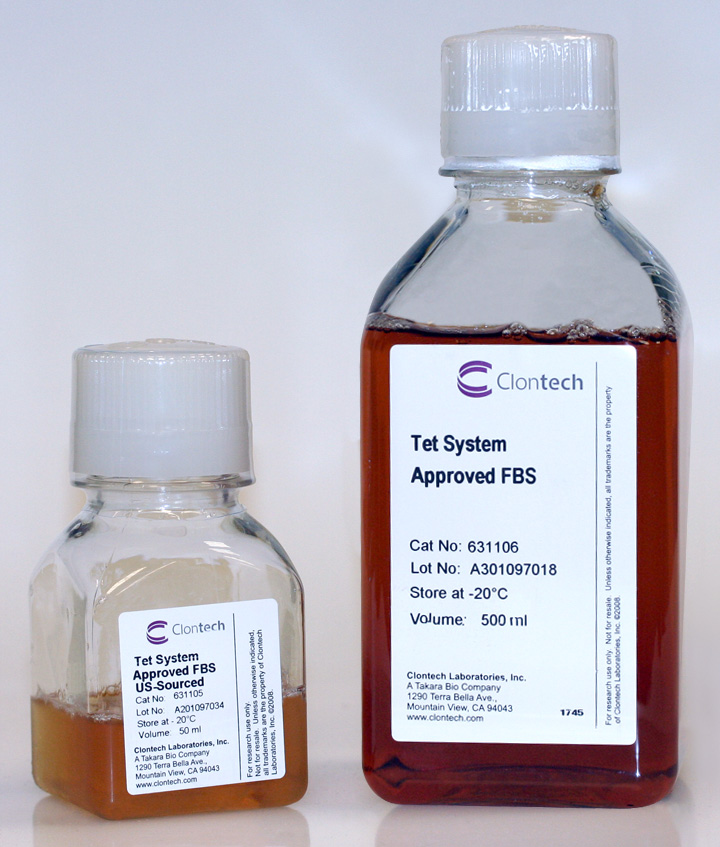 Fetal bovine serum (FBS) approved for use with tetracycline-inducible expression systems