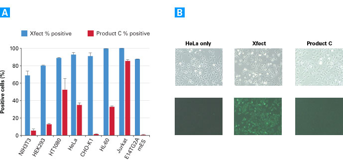 Protein transfection efficiencies across different cell lines: Xfect Protein Transfection Reagent vs. the leading competitor, Product C