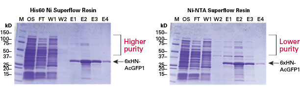 Higher purity was obtained when using His60 Ni Superflow for purification of recombinant his-tagged protein—as compared to Ni-NTA Superflow resin