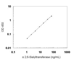 A typical standard curve obtained using the Human alpha-2,6-Sialyltransferase ELISA Kit