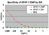 ELISA demonstrating the specificity of Anti-Human GFAT1 (S243 Phosphorylated) Rabbit IgG Antibody for the phosphorylated form of GFAT1