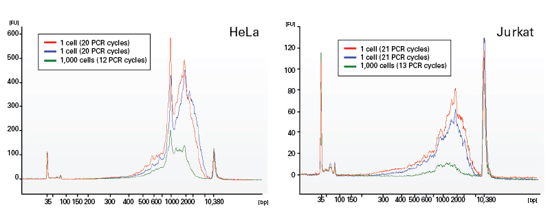 Individual cells or 1,000 cells (HeLa or Jurkat; Panel A and Panel B, respectively) were used as input for the SMARTer Ultra Low Input RNA Kit for Sequencing - v3