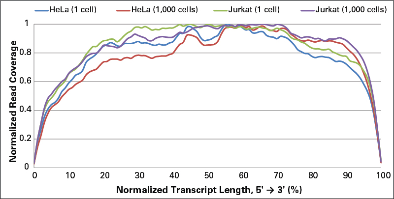 The gene body coverage of the cDNA libraries made from 1 or 1,000 HeLa cells (blue and red lines, respectively), or 1 or 1,000 Jurkat cells (green and purple lines, respectively) using the SMARTer Ultra Low Input RNA Kit for Sequencing - v3 was determined using RSeQC