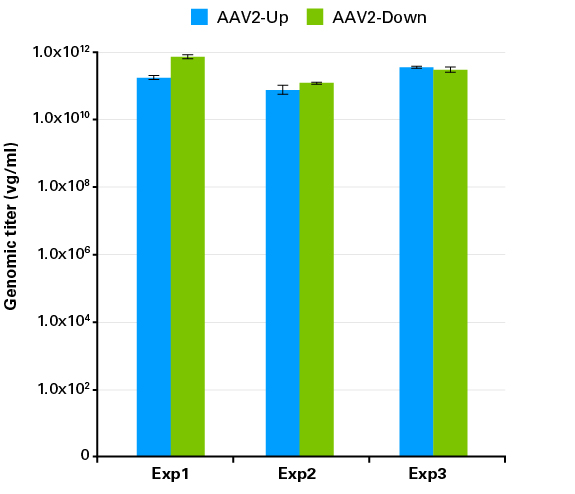 Consistent recovery of equally high genomic titers of AAV2-Up and AAV2-Down viral particles
