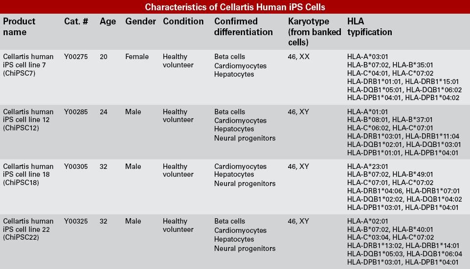 Characteristics of Cellartis human iPS cells