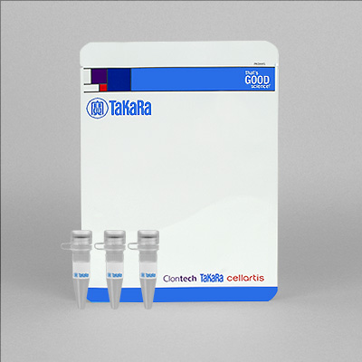 TaKaRa LA Taq DNA Polymerase Hot-Start Version Product Photo: 125 Units (RR042A)