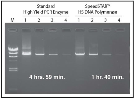 Amplification of an 8.5 kb Human Genomic DNA Fragment using a Standard High Yield Polymerase and SpeedSTAR HS DNA Polymerase