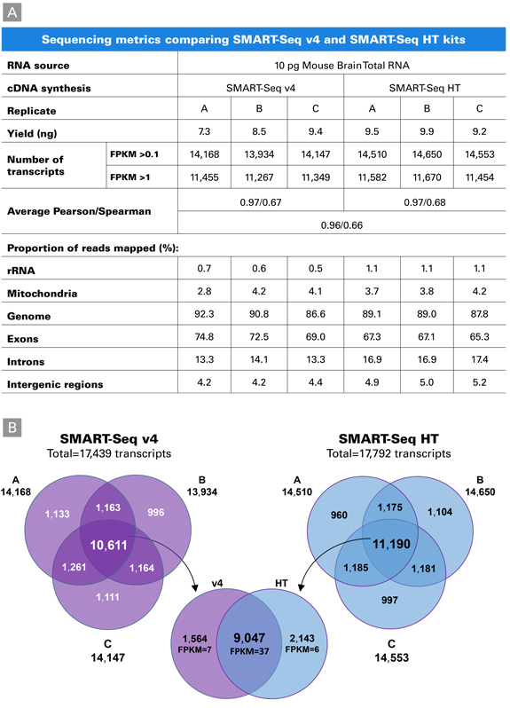 High overlap of transcripts identified with the SMART-Seq v4 and SMART-Seq HT kits