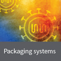 Retrovirus packaging cell lines and systems